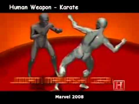 human weapon : karate, muay thai and savate
