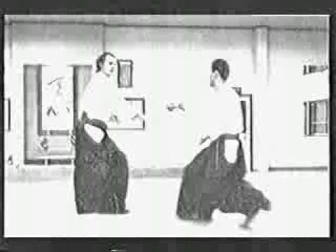 Steven Segal Kicking real life ASS! Aikido Martial Art