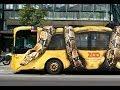 Mobil Bus Dengan Iklan Lucu & Unik di Dunia