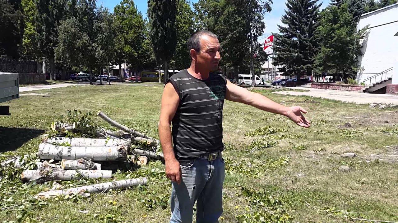 Au tăiat copacii noaptea, evacuau pe furiș (ru)