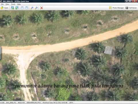 ratindo pratama jasa land clearing - monitoring crop health kebun sawit -