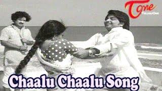 Seeta Malakshmi Songs || Chaalu Chaalu || Chandra Mohan || Rameshwari - TELUGUONE
