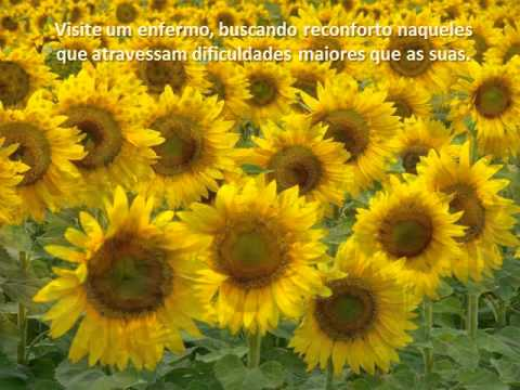 Texto antidepressivo Chico Xavier e Andre Luiz