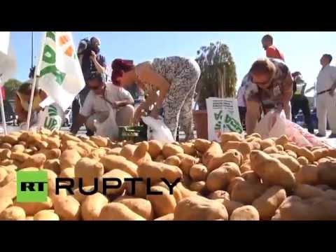 Agricultores de España botan patatas en respuesta al embargo ruso