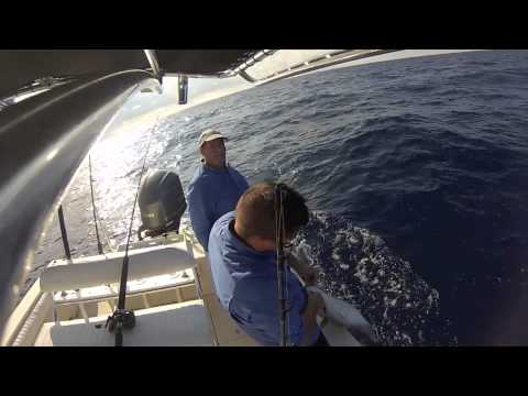 Jigging with First Due Fishing Team Video 1