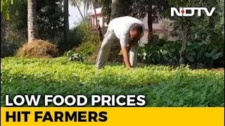 As Inflation Falls, Low Food Prices Hit Farmers - NDTV