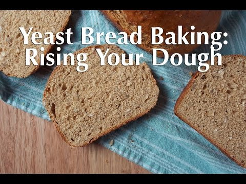 Yeast Bread Baking: How to Rise Your Dough