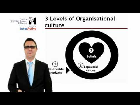Lecture: Introduction to Organisational Culture and Values