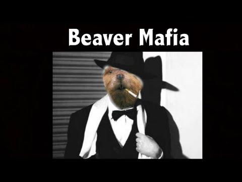 Beaver Mafia- Warning You Best Pay What You Owe