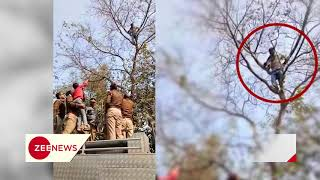 Farmer climb on tree in front of CM house in Lucknow, threatened suicide - ZEENEWS