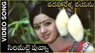 Kattu Kathalu Video Song | Padaharella Vayasu Movie | Sridevi | Chandra Mohan | K. Chakravarthi - RAJSHRITELUGU