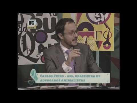 MTV Debate - Rodeios 1/5