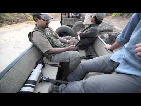 4 hour Tiger Safari in Bandhavgarh Tiger Reserve time lapsed to 3 minutes REAR VIEW