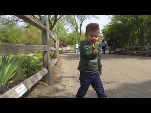A GoPro Trip to the Detroit Zoo