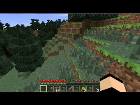 Minecraft SinglePlayer Survival Part 4 Building a House