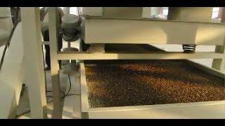 Оборудование для переработки гречки посевной