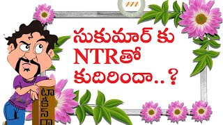 Is Sukumar Taking All Care About Jr NTR Film..? - MARUTHITALKIES1