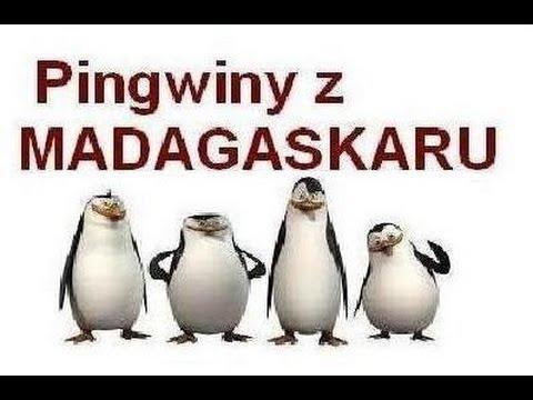 Pingwiny z Madagaskaru - Albo rybka , albo..