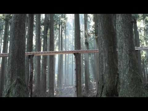 Video: Žmonės gyvena - - Žmonės kuria
