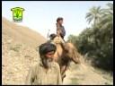 baloch hummal sardaar balochistan