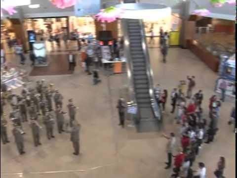 Divizia 4 Gemina in concert la mall
