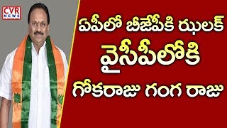 ఏపీలో బీజేపీకి జలక్ : Shock To BJP | Gokaraju Ranga Raju to Join In YSRCP | CVR News - CVRNEWSOFFICIAL