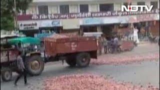 प्याज़ का गिरता भाव, किसानों के टूटते सपने - NDTVINDIA