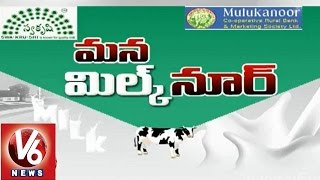 Mulukanoor Womens Cooperative milk dairy - V6 Spot Light - V6NEWSTELUGU