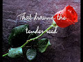 Some Say Love/The Rose
