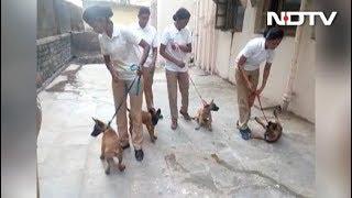 मुंबई पुलिस को मिले 5 नए 'सिपाही - NDTVINDIA