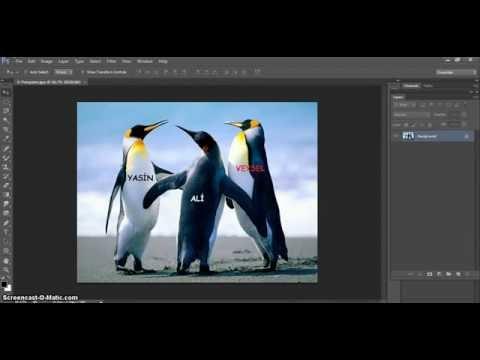 Как создать экшен в фотошоп cs6