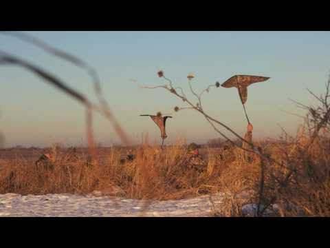 Buck Gardner Kansas Goose Hunt - January 29, 2011