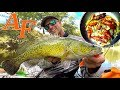 Catch and Cook Shrimp Adventure Kayak Fishing Murray Cod EP.404