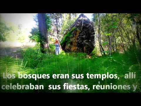 Los Bosques y los Árboles.