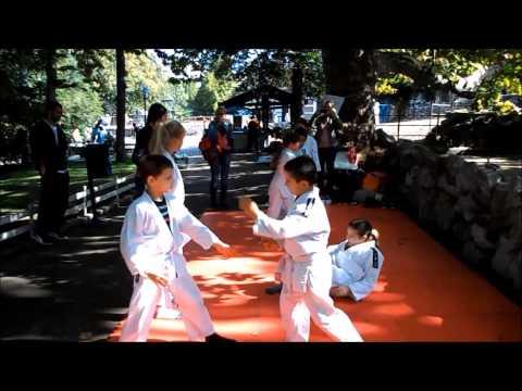 Sportska bajka 2013 - aikido