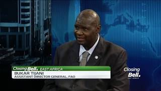 FAO's Bukar Tijani discusses agribusiness opportunities for African youth - ABNDIGITAL