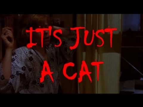 Supercut: Scary Scenes When It Turns Out Just To Be A Cat
