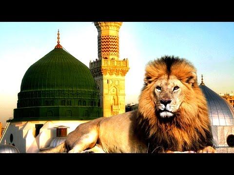 هل تعلم لماذا ستدخل الاسود المسجد النبوي في اخر الزمان - عرب توداي