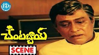 Chantabbai Movie Scenes - Chiranjeevi Finds Lost Diamonds || Suhasini || Chandra Mohan || Jandhyala - IDREAMMOVIES