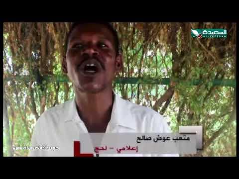 تقرير : بساتين الحسيني في لحج ثروة إنسانية عرضة للتسحر (13-7-2018)
