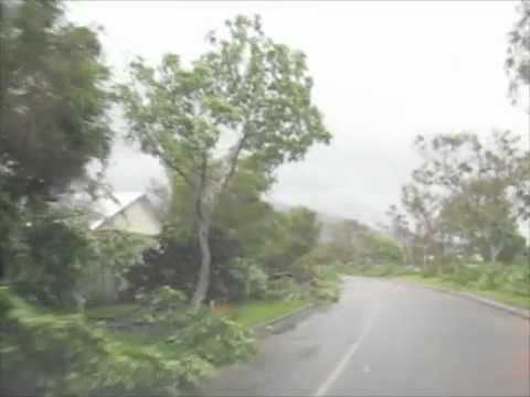 Tropical Cyclone Yasi Aftermath 2011 - Tree damage around Townsville