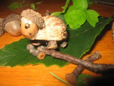 Cómo hacer una tortuga con semillas