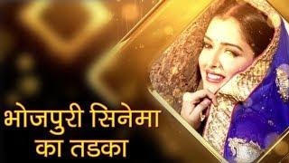 Bhojpuri cinema ka tadka / Rani chatterjee ka video apne fan k liye - ITVNEWSINDIA