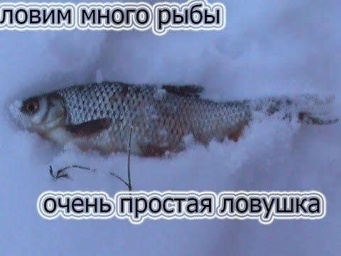 как поймать побольше рыбы