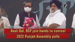 video: Punjab में Akali Dal और BSP का Alliance, मिलकर लड़ेंगे 2022 का चुनाव