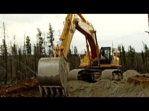 Excavadora - Video Musical para Niños