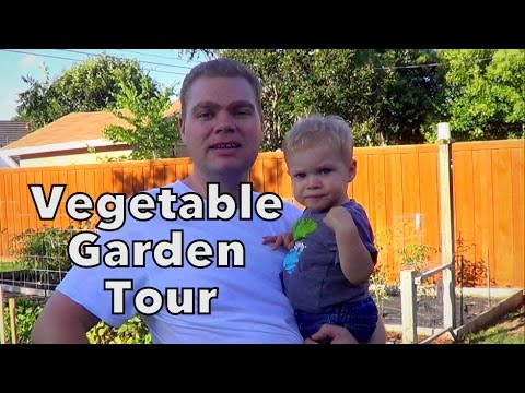Early May Garden Tour & Where are our Chickens?