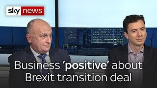 Is the EU transition period long enough? - SKYNEWS