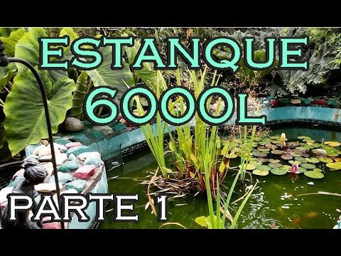 Related video for Como oxigenar el agua de un estanque sin electricidad