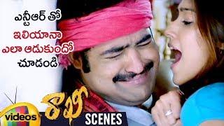 Ileana Trolls Jr NTR | Rakhi Telugu Movie Scenes | Charmi | Devi Sri Prasad | Mango Videos - MANGOVIDEOS